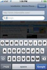 Safari Address bar w/google bar