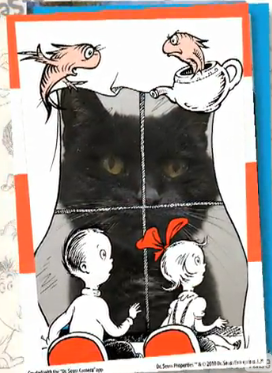 A cat in a Cat in the Hat photo card