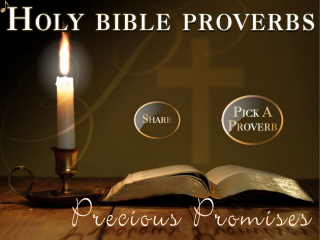 Holy Bible Proverbs (KJV)