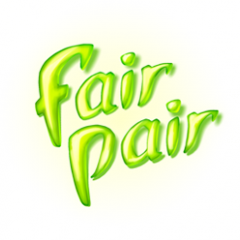 FairPair - a puzzle suited for childeren