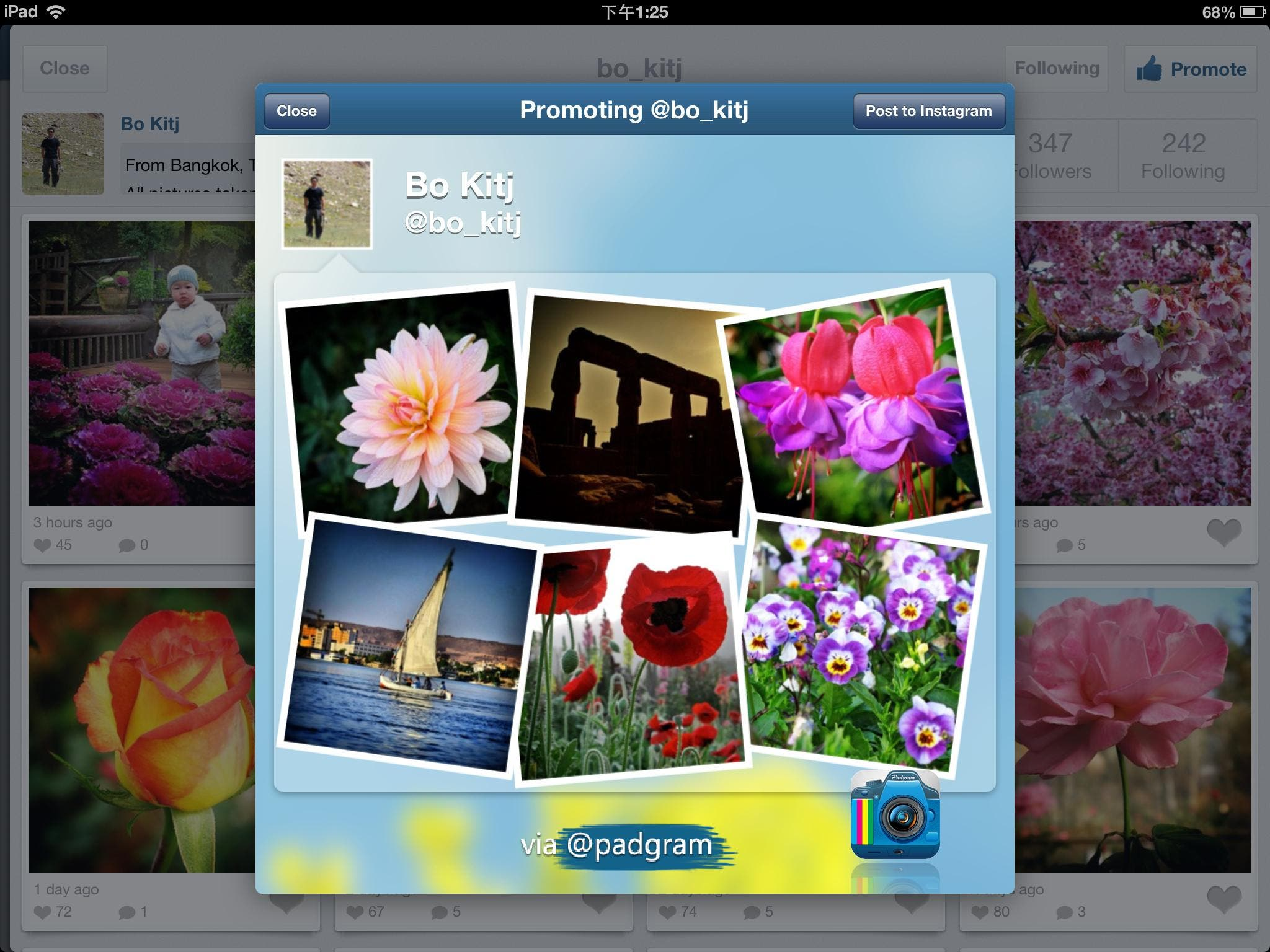 Padgram 2.6 for iPad-Top Instagram Viewer Creates Eye-Catching Shoutouts
