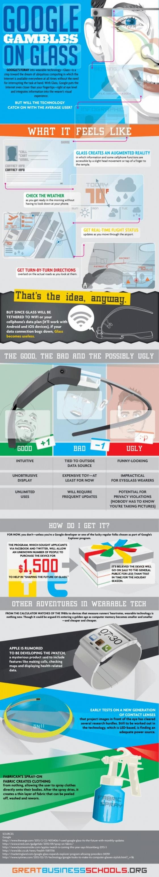 Google Gambles on Glass