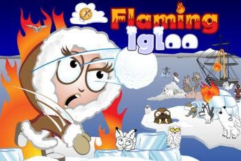 FlamingIgloo app review