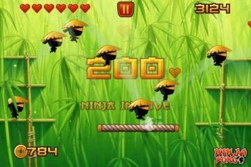 Ninja In Love