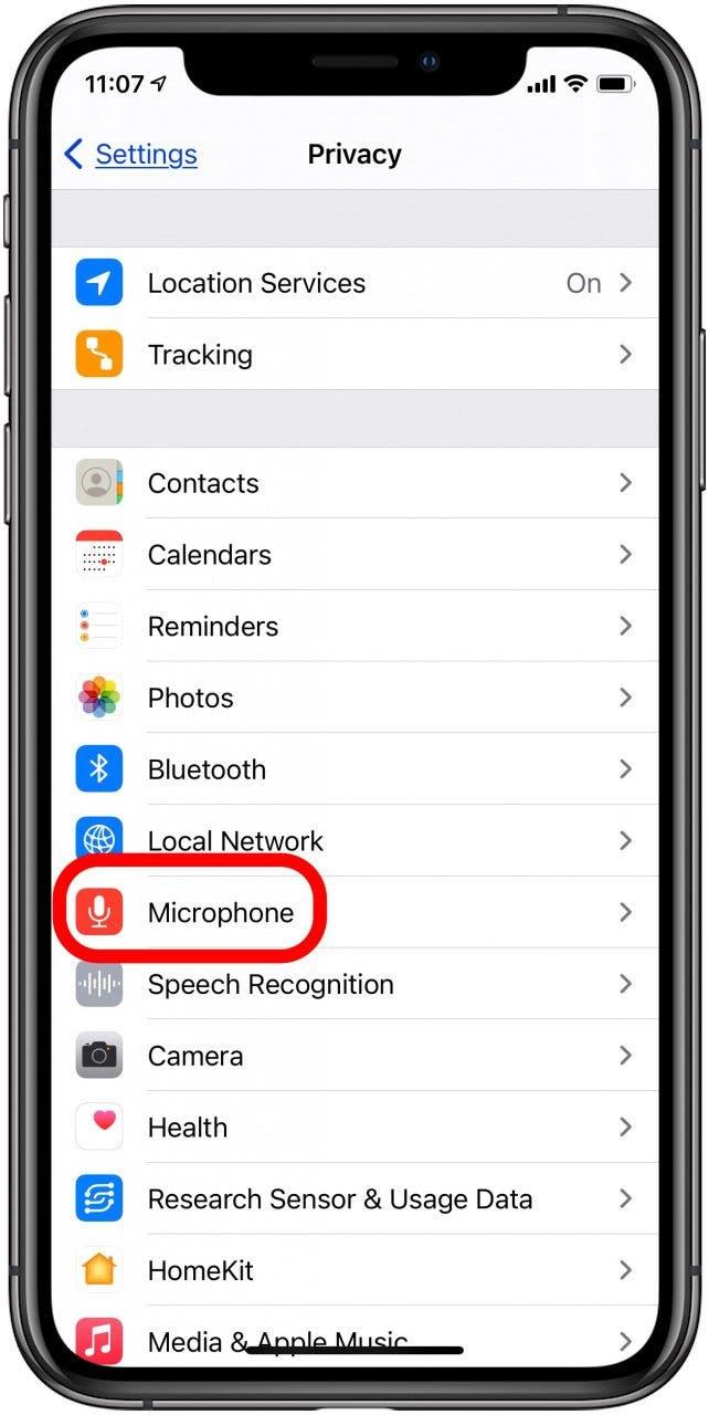 ipad and iphone microphone settings