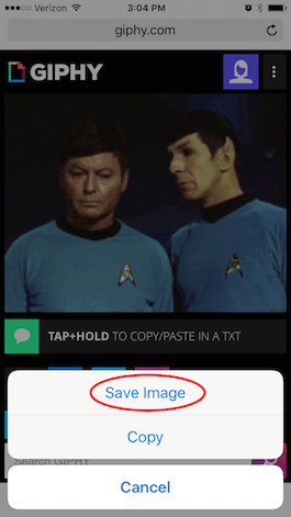 How to Save Gifs